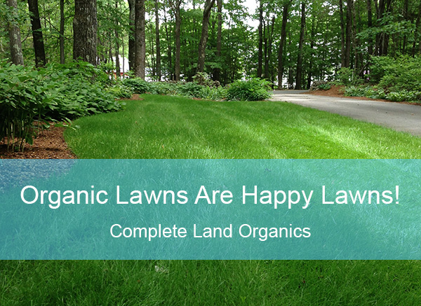 Organic lawns are happy lawns!