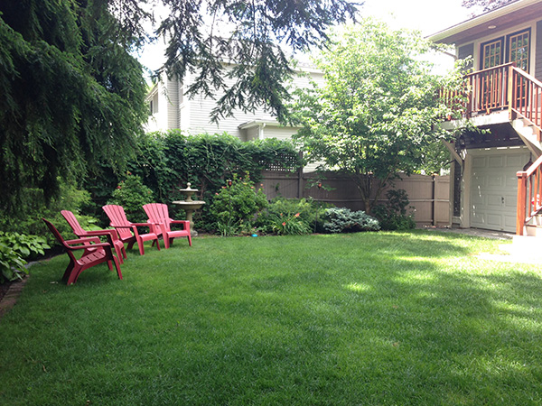 Back yard managed chemical free by Complete Land Organics