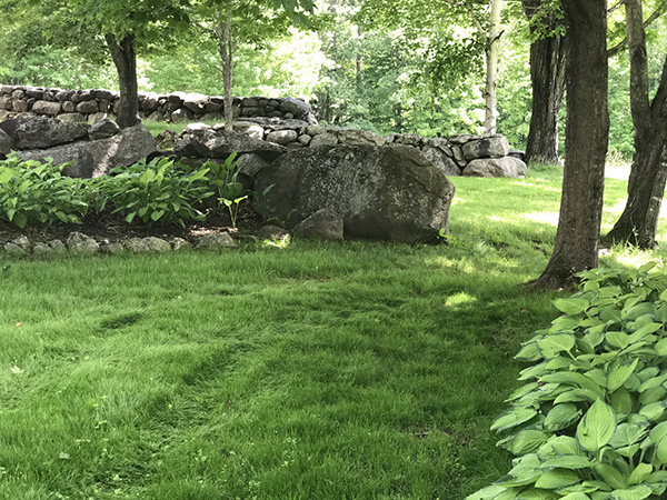 Natrual landscaping at its best in NH