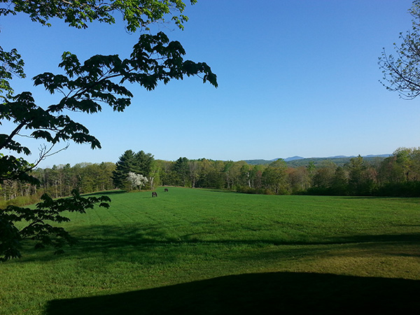 Organic lawn care services in Andover New Hampshire by Complete Land Organics